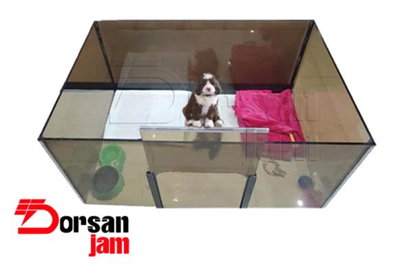 پارک سگ شیشه ای